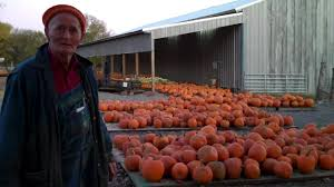 Knoxville Ia Pumpkin Patch by Pumpkin Farm Blankenship Farms Murfreesboro Tennessee Youtube