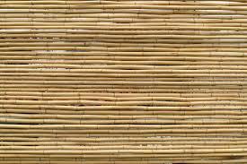 die wichtige wahrheit über bambusmatten ratgeber matte1 de