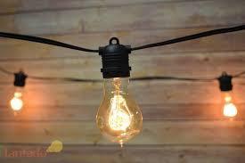 24 socket outdoor commercial string light set edison a19