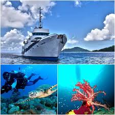 Latest Special Offers From Diverse Travel | Dive Truk Lagoon - Scuba ... Top 2 Best Truk Lagoon Liveaboard Trips The Adventure Junkies Kawanishii H8k2 Emily Flying Boat Tom Frohnhofer Diving The San Francisco Maru In Chuuk Micronesia Trucks Truk Lagoon Becky Schott Wm Sm Scuba Freediving Carlos Garcia Dive With Diverse Travel Ultimate Wreck Divers Haven Wrecks From Odyssey 1422nd April 2018 Nippo Of Imperial Japanese Navy Coral And Sponges On A Mast Of Fujikawa Shipwreck Thankful For Rescue Coast Guard Compass