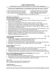 Resumes For Executive Assistants Executive Sample Resume Executive