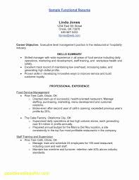 Cook Resume Format Beautiful Summary Examples