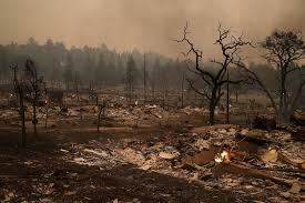 Napa Pumpkin Patch Hours by Napa Sonoma Counties Devastated By Wildfire Cbs Los Angeles
