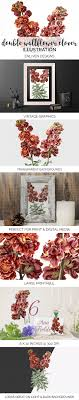 100 Wallflower Designs Clover Vintage Flowers Illustrations Creative Market