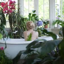 pflanzen fürs badezimmer diese 10 arten mö es feucht