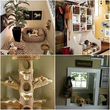 Ideas For A Pet Friendly Home | Pet Home Friendly | Pinterest Home Designs Unique Plant Stands Stylish Apartment With Cozy 12 Tips For Petfriendly Decorating Diy Ideas Awesome And Cool Dog Houses Room Simple Pet Friendly Hotel Rooms Luxury Design Modern 14 Best Renovation Images On Pinterest Indoor Cat House Houses Andflesforbreakfast My Dog House Looks Better Than Your Human Emejing Photos Mesmerizing Plans Best Idea Home Design A Hgtv Interior Comely Designing A Architectural Glass Landing