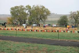 Denver Area Pumpkin Patches by Rock Creek Farm Pumpkin Patch And Corn Maze Family Fun Play Area