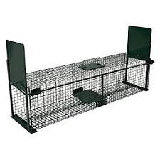 live cat trap moorland safe 5007 large live animal trap garden lawn