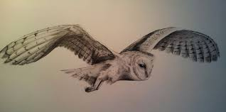 Another hoot hoot barn owl pencil mission by BecciES on DeviantArt