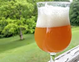 Smashed Pumpkin Beer Recipe by 353 Best Brewing Images On Pinterest Beer Craft Beer And
