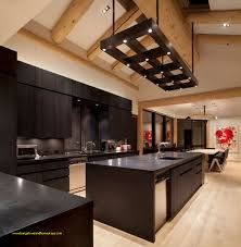 Best Of Kitchen Remodel Dark Cabinets For Home Design