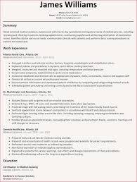 Functional Resume Template Free Examples Of