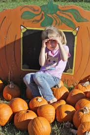 Heather Farms Pumpkin Patch by Top 15 Pumpkin Patches Of Mississippi And Surrounding Areas