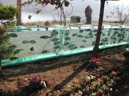 aquarium geant a visiter belgique les 25 meilleures idées de la catégorie aquarium geant sur