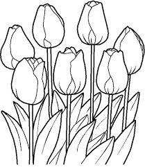 Flower Bouquet Tulips in the Garden in Flower Bouquet Coloring Page