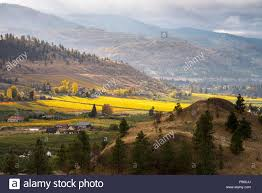 100 Naramata Houses For Sale Mountains Houses And Colourfull Vineyards In The Fall On