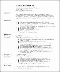 Veterinary Technician Resume Objective Examples Good Vet Tech Easy Print Professional Create