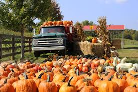 Pumpkin Festival Beckley Wv by Gritt U0027s Farm Home