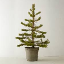 What Is The Best Christmas Tree Stand by 34702639 111 A Zoom2
