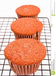 Cupcake Stock Photo Image Of Photography Homemade Velvet