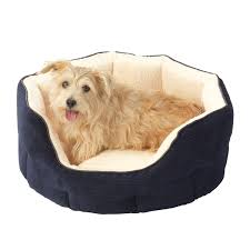Soft Dog Beds – Next Day Delivery Soft Dog Beds From WorldStores ... Faux Suede Pet Fniture Covers For Sofas Loveseats And Chairs Comfort Research Big Joe Bagimals Dawson The Dog Bean Bag Armchair Shih Tzu Lap On The Stock Photo Image 350298 Dog Cat Chamomile Amazoncom Sure Fit Quilted Throw Sofa Slipcover Taupe King Sitting His Throne 1018169 Shutterstock Antique Asian Chair Chinese Export Wood Carved Dragon Lion Foo Me My Dogcat Fold Out Bed With Protector Available In Dogs Amazoncouk Boxer Destroyed A Leather Armchair Alone At Home Damaged Hound Buttonback Occasional Loaf