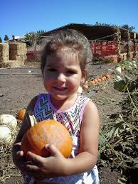 Kidspace Childrens Museum Annual Pumpkin Festival by Petting Zoo Archives Project Refined Life