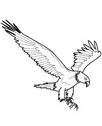 Flying Eagle Colouring Page