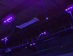 Black Light Lighting – Sunlite Science and Technology Inc