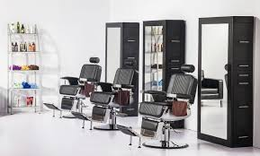 All Purpose Salon Chair Canada by Constantine