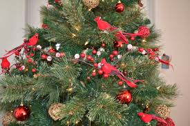 Silvertip Fir Christmas Tree by Custom Decorated Live Residential Christmas Trees