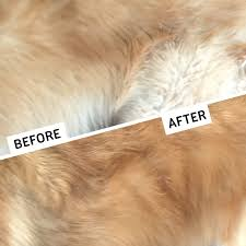 Great Pyrenees Excessive Shedding by Amazon Com Gopets Dematting Comb With 2 Sided Professional