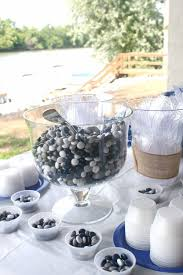 Graduation Decoration Ideas Martha Stewart by Best 25 Outdoor Graduation Parties Ideas On Pinterest Grad