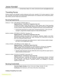 A Rhcheapjordanretrosus Fresh Professional Profile Resume Examples Nursing The Format Inspirational Sample