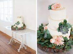 Triunfo Creek Wedding Photography Succulent Cake