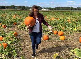 Fairs U0026 Festivals Scarecrows Pumpkins Oktoberfests Oh My by Kathy Romano U0027s Fall Activities List Go To Guide For The Best