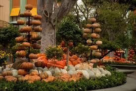 Singing Pumpkins Grim Grinning Pumpkins Projector by Halloween Fun At Downtown Disney District At The Disneyland Resort