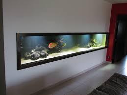 aquarium dans le mur aquarium encastrable dans un mur prix construction maison béton armé