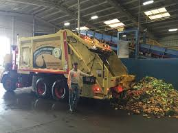 Christmas Tree Recycling East County San Diego by Marin Sanitary Service U2013 Conservation U2013 Our Earth Our Mission