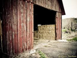 Barn Door Is Open | Greg Berdan | Flickr 11 Best Garage Doors Images On Pinterest Doors Garage Door Open Barn Stock Photo Image Of Retro Barrier Livestock Catchy Door Background Photo Of Bedroom Design Title Hinged Style Doorsbarn Wallbed Wallbeds N More Mfsamuel Finally Posting My Barn Doors With A Twist At The End Endearing 60 Inspiration Bifold Replace Your Laundry Pantry Or Closet Best 25 Farmhouse Tracks And Rails Ideas Hayloft North View With Dropped Down Espresso 3 Panel Beige Walls Window From Old Hdr Creme