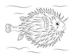 Click To See Printable Version Of Puffer Fish Coloring Page