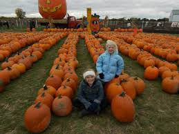 Pumpkin Patch Toledo Ohio by Trabbic U0027s Pumpkin Patch Hunting With Mike