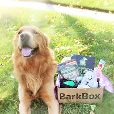 Yummmiiee: [BARKBOX] October Box For Large Dogs Review + ... Bark Box Coupons Arc Village Thrift Store Barkbox Ebarkshop Groupon 2014 Related Keywords Suggestions The Newly Leaked Secrets To Coupon Uncovered Barkbox That Touch Of Pit Shop Big Dees Tack Coupon Codes Coupons Mma Warehouse Barkbox Promo Codes Podcast 1 Online Sales For November 2019 Supersized 90s Throwback Electronic Dog Toy Bundle Cyber Monday Deal First Box For 5 Msa