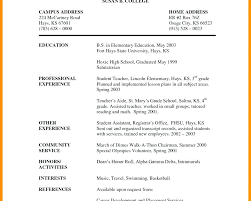 Teaching Assistant Experience Resume Sample