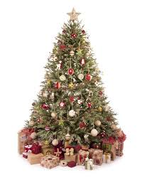Canaan Fir Good Christmas Tree by 16 Types Of Christmas Trees Allfreechristmascrafts Com