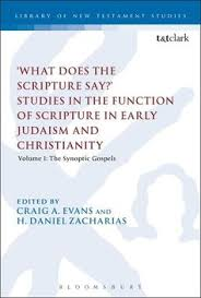 What Does The Scripture Say Studies In Function Of Early Judaism And Christianity Volume 1 Synoptic Gospels