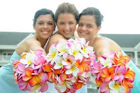 Beautiful Premium Quality Plumeria Frangipani Classic White Hawaiian Pink Orange Raspberry And Purple Plumerias Bridal Bridesmaid Bouquets