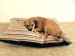 Chew Resistant Dog Bed by Chew And Scratch Resistant Dog Beds Noten Animals Dog Beds And