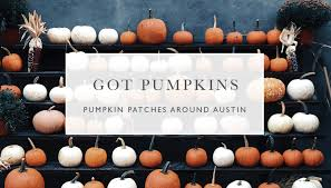 Pumpkin Patch Bastrop County by Got Austin Fall Events Happenings Gottesman Residential Real