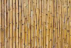 100 Bamboo Walls With Unique Patterns Stock Photo Picture And Royalty