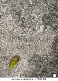 Dry Leaf On Concrete Top View 474419242